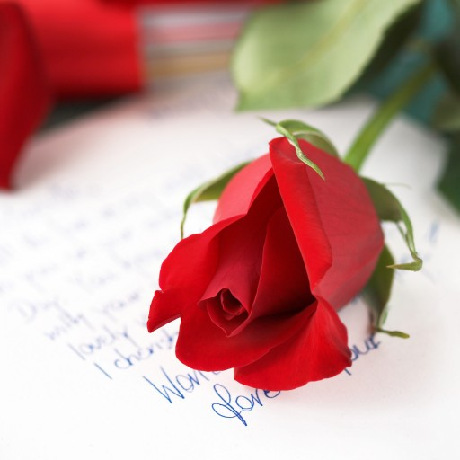 15 Arabic Love Phrases For Valentine S Day Arabicpod101