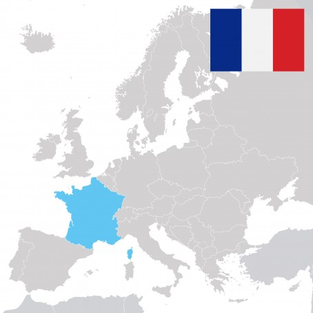 The Origins of and the Different Influences on Today's French Language
