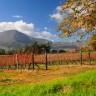 False Bay & Cape Winelands