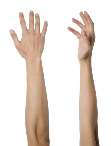 french word of the day arm noun